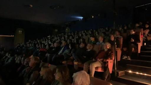 Kurzfilmauslese 2019